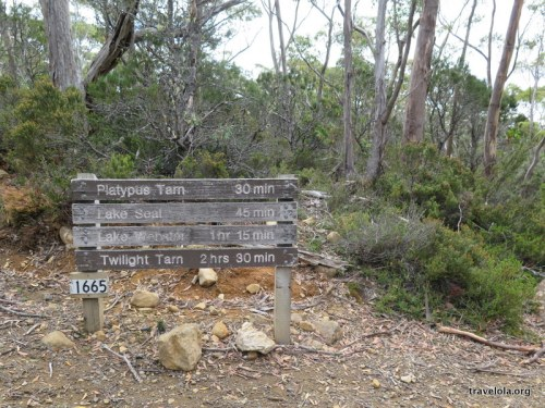 Sign post for various treks around Mt Field National Park, Tasmania