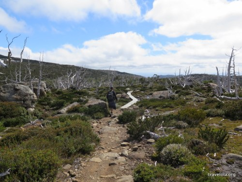 Hiking from the Tarn Shelf down across a rocky, ghost gum landscape towards Lake Newdegate in Mt Field National Park, Tasmania.