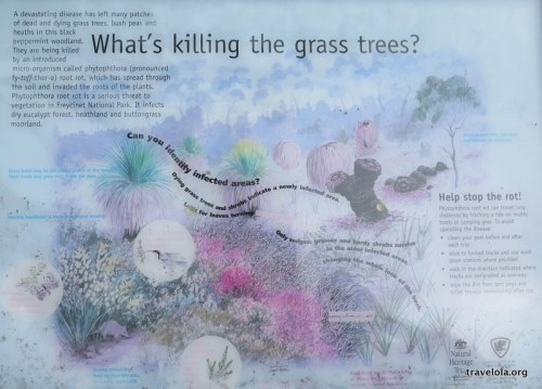 Plaque in Freycinet National Park displaying info on grass tree rot